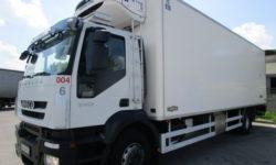 Noleggio Camion frigo 55 QLI